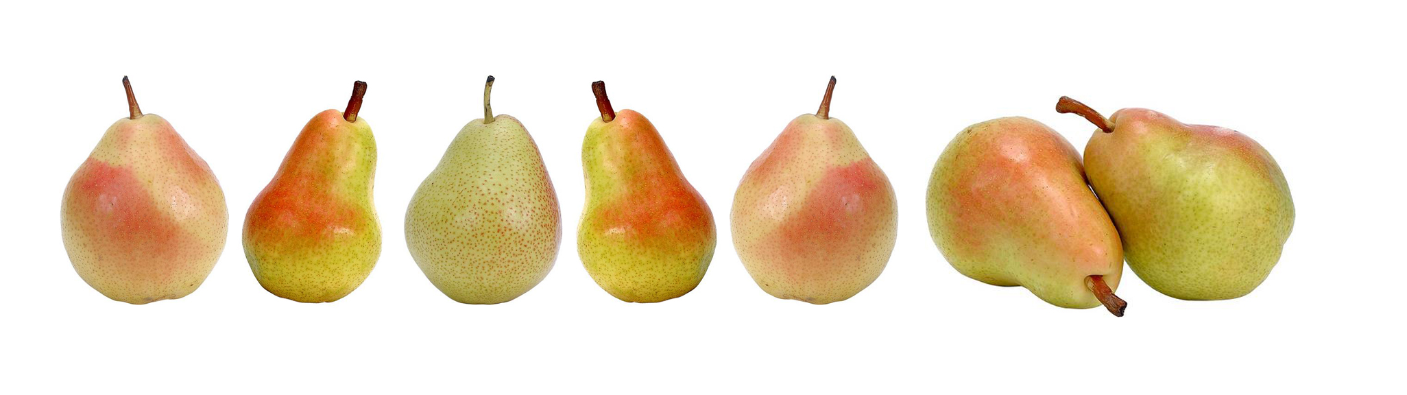 Seven different pears 34
